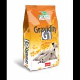 Premil Herbal Gravidity G1